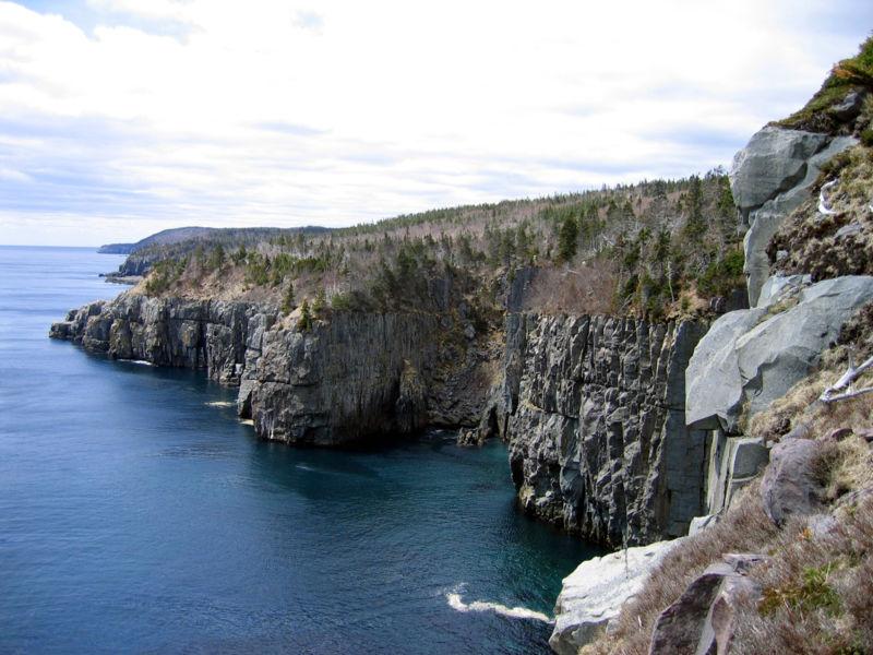 Скалистый берег острова Ньюфаундленда