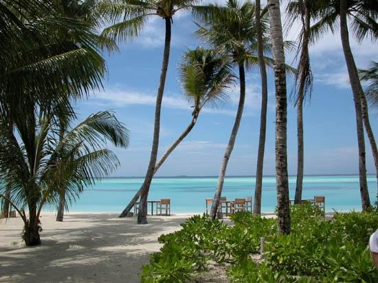 Пляж острова Шри-Ланка